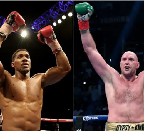 Pertarungan Fury dengan Joshua Tidak Akan Terjadi di Akhir 2020